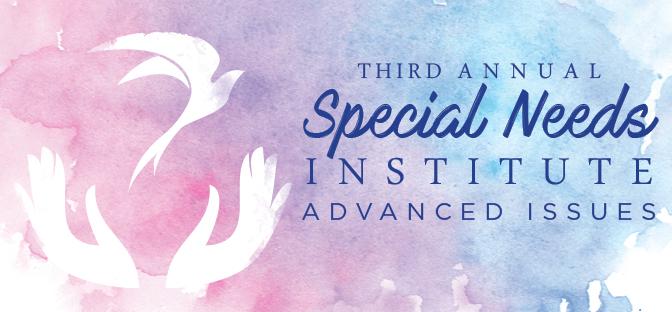 Special Needs Institute