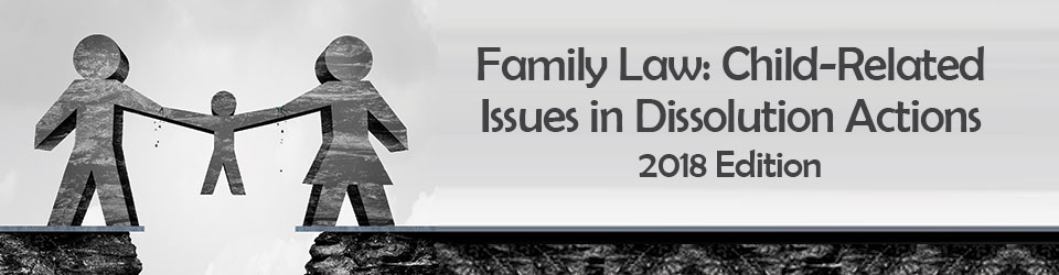 Family Law: Child Issues