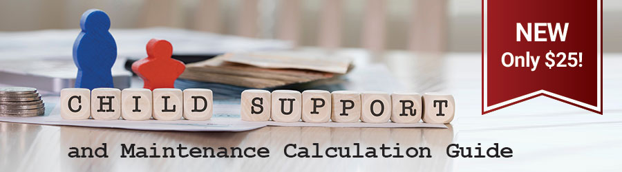 Child Support and Maintenance Calculation Guide