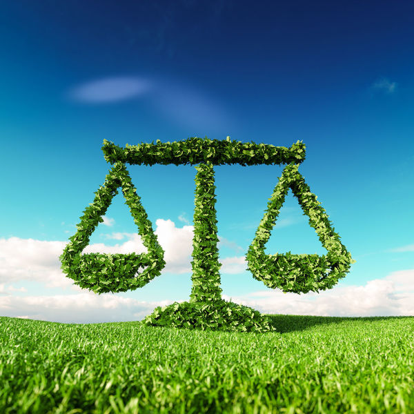 Picture of Environmental Law in Corporate and Real Estate Transactions 2019 Edition