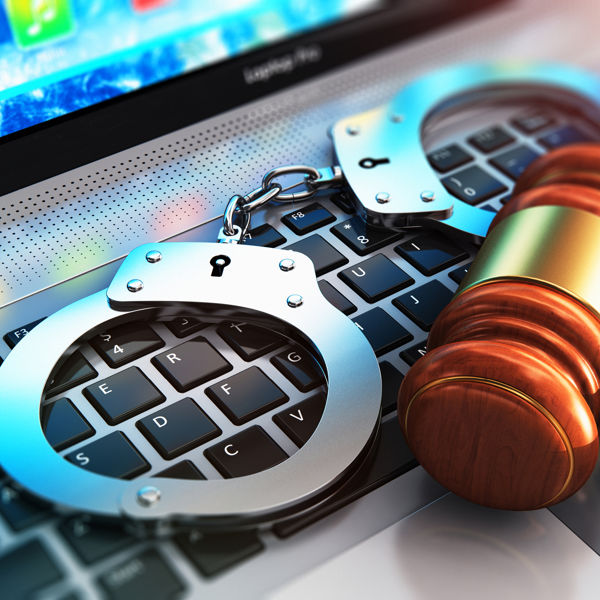 Picture of Software Overview for Digital Management of Criminal Practice