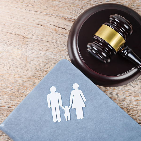 Picture of Adoption Law 2020 Edition