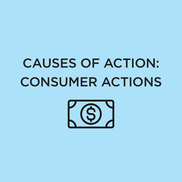 Picture of Causes of Action: Consumer Actions 2020 Edition