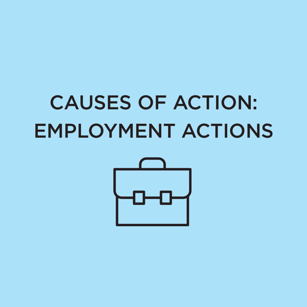Picture of Causes of Action: Employment Actions 2021 Edition