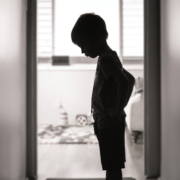 Picture of Child Welfare Law: Neglected, Abused, and Dependent Minors 2021 Edition