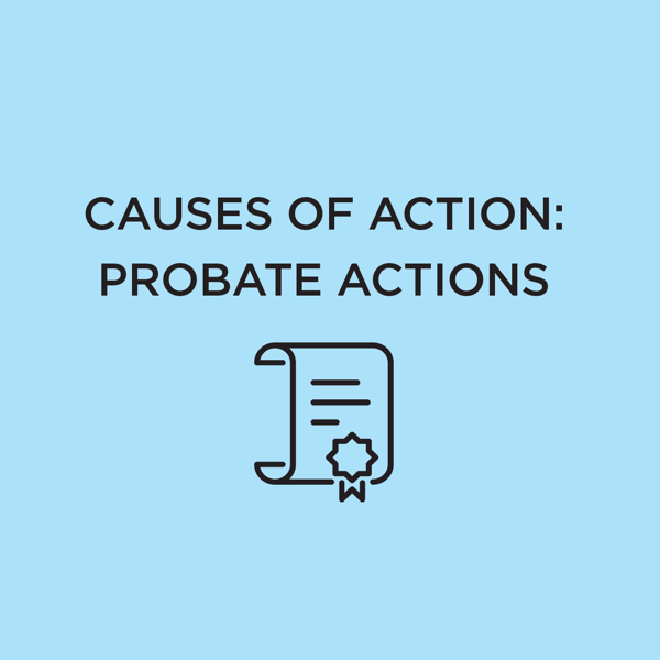 Picture of Causes of Action: Probate Actions 2021 Edition