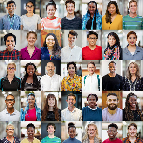 Picture of Diversity Initiatives in Illinois Courts