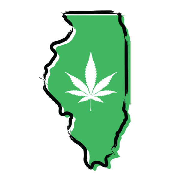 Picture of Cannabis Law in Illinois: The Basics and Beyond